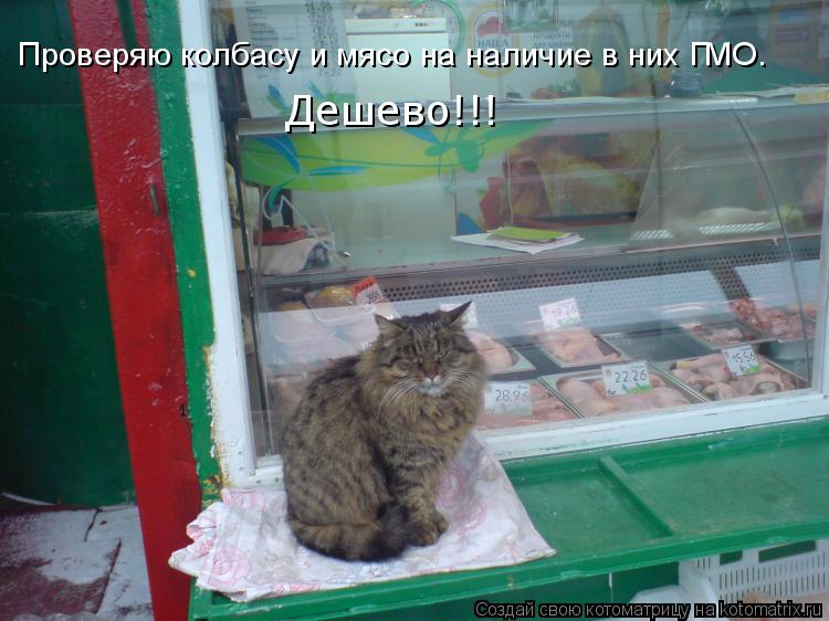 Котоматрица: Проверяю колбасу и мясо на наличие в них ГМО. Дешево!!!