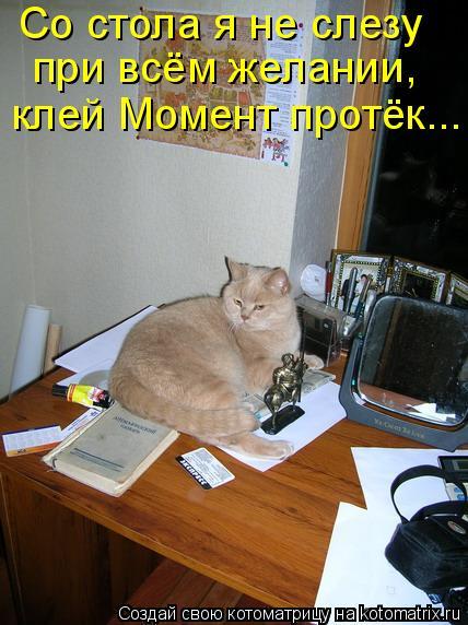 Котоматрица: Со стола я не слезу  при всём желании,  клей Момент протёк...