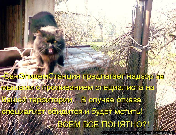Котоматрица: -СанЭпидемСтанция предлагает надзор за мышами с проживанием специалиста на Вашей территории....В случае отказа специалист обидится и будет