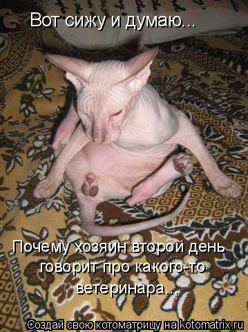 golie-broshennie-devushki