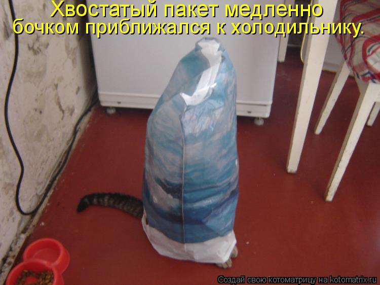 Котоматрица: Хвостатый пакет медленно  бочком приближался к холодильнику.