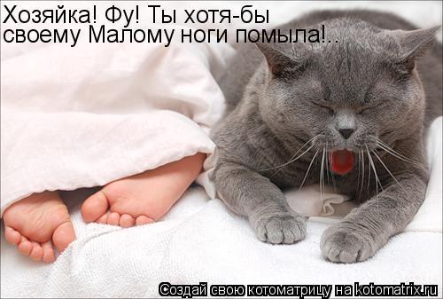 Котоматрица: Хозяйка! Фу! Ты хотя-бы своему Малому ноги помыла!..