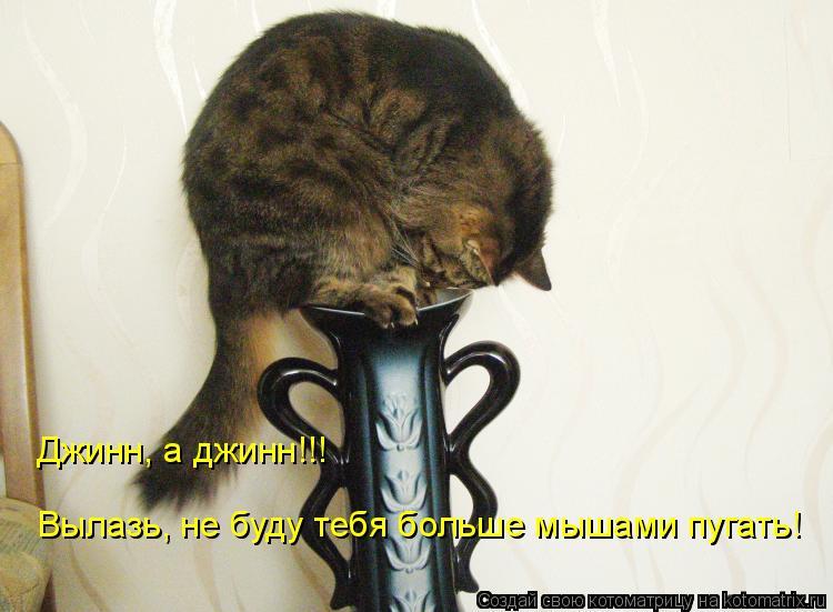 Котоматрица: Джинн, а джинн!!! Вылазь, не буду тебя больше мышами пугать!