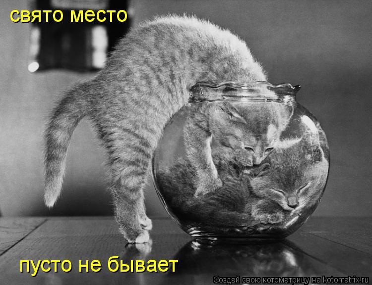 http://kotomatrix.ru/images/lolz/2010/05/30/588492.jpg