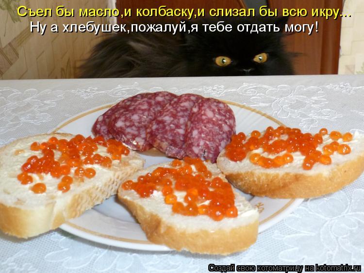 Котоматрица: Съел бы масло,и колбаску,и слизал бы всю икру... Ну а хлебушек,пожалуй,я тебе отдать могу!