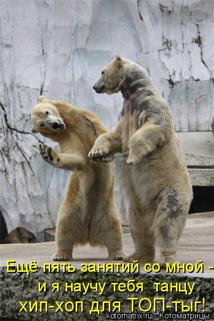 Котоматрица: Ещё пять занятий со мной -  хип-хоп для ТОП-тыг!   и я научу тебя  танцу