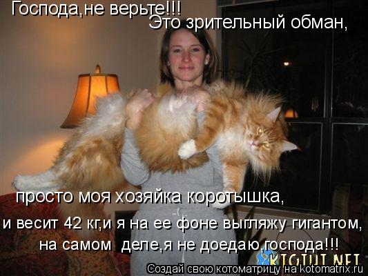 Котоматрица: Господа,не верьте!!! Это зрительный обман, просто моя хозяйка коротышка, и весит 42 кг,и я на ее фоне выгляжу гигантом, на самом  деле,я не доеда