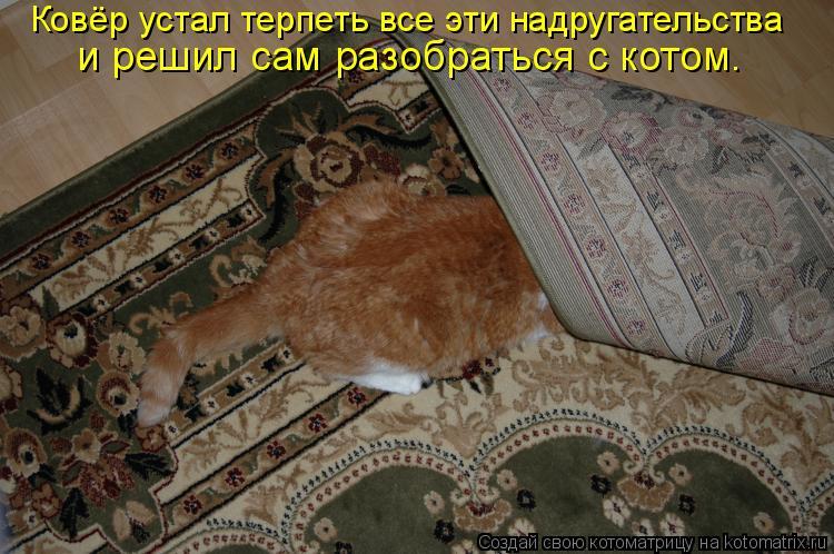 Котоматрица: Ковёр устал терпеть все эти надругательства  и решил сам разобраться с котом.