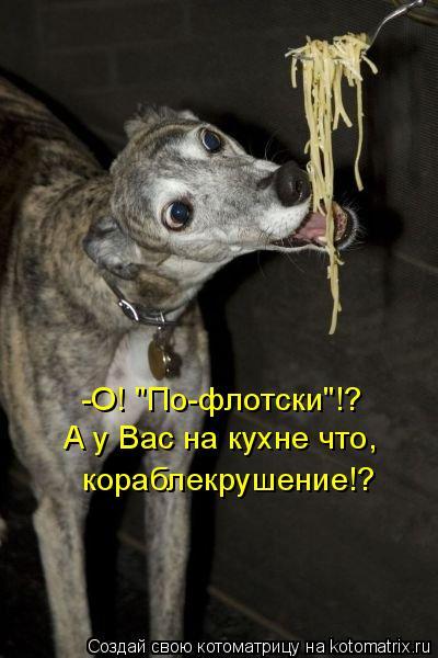"""Котоматрица: -О! """"По-флотски""""!? А у Вас на кухне что, кораблекрушение!?"""