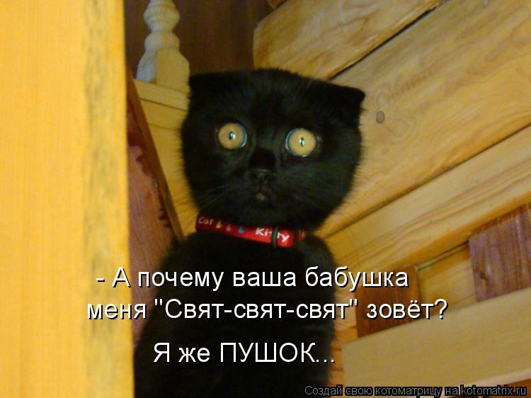 http://kotomatrix.ru/images/lolz/2010/06/01/590203.jpg
