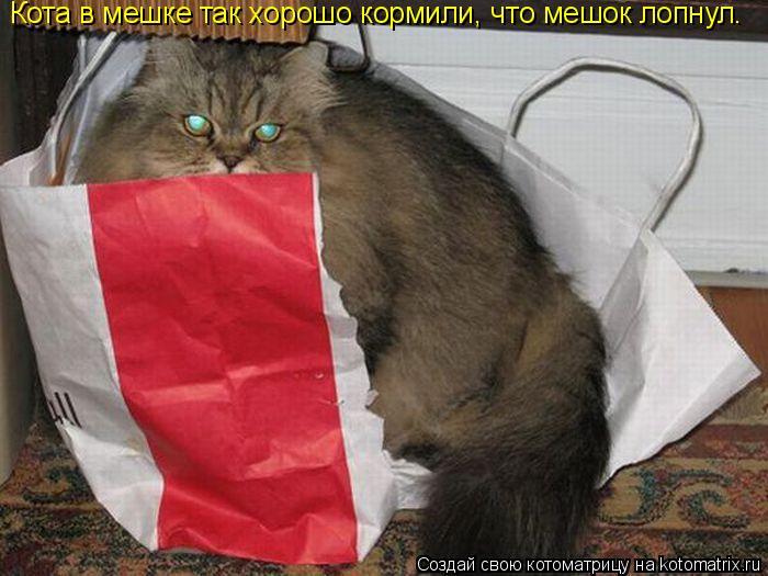 Котоматрица: Кота в мешке так хорошо кормили, что мешок лопнул.
