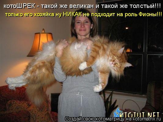 Котоматрица: котоШРЕК - такой же великан и такой же толстый!!! только его хозяйка ну НИКАК не подходит на роль Фионы!!!