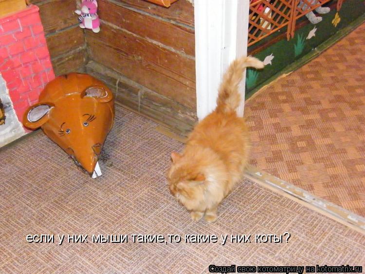 Котоматрица: если у них мыши такие,то какие у них коты?