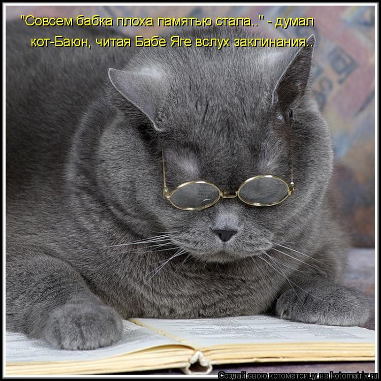 "Котоматрица: ""Совсем бабка плоха памятью стала.."" - думал  кот-Баюн, читая Бабе Яге вслух заклинания.."