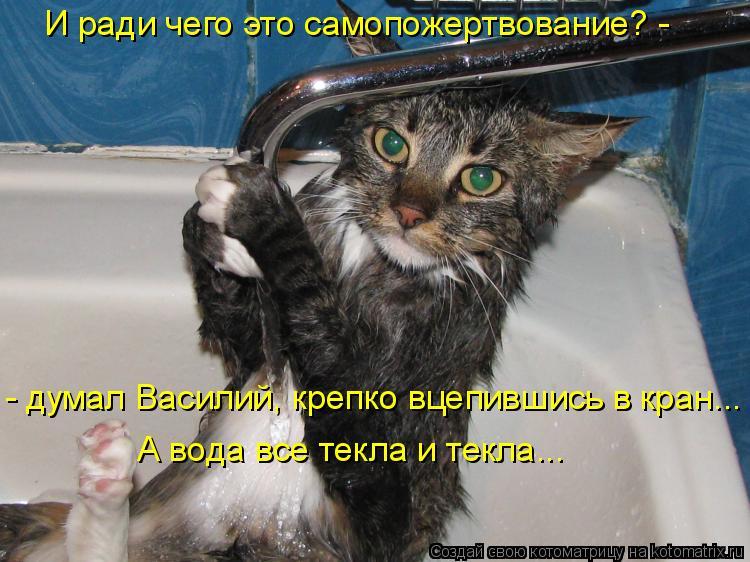 Котоматрица: А вода все текла и текла... И ради чего это самопожертвование? -  - думал Василий, крепко вцепившись в кран...