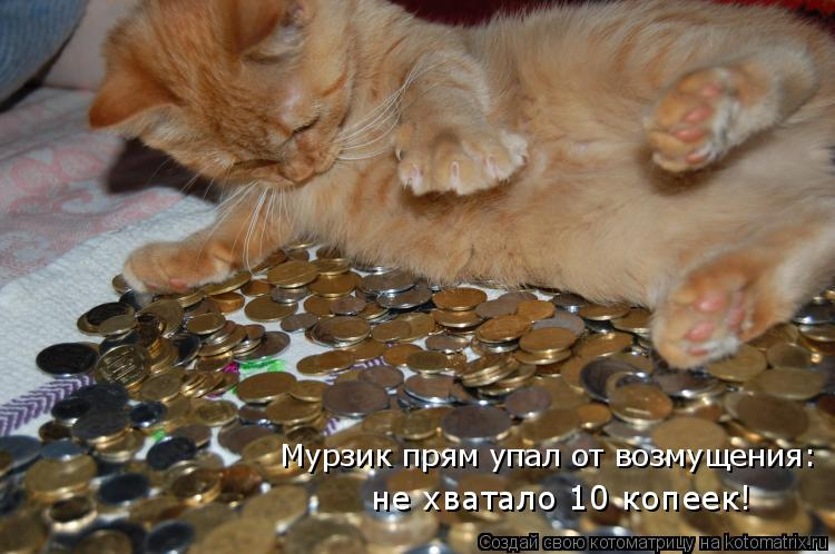 http://kotomatrix.ru/images/lolz/2010/06/03/591986.jpg