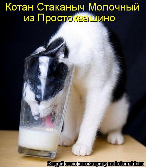 Котоматрица: Котан Стаканыч Молочный из Простоквашино