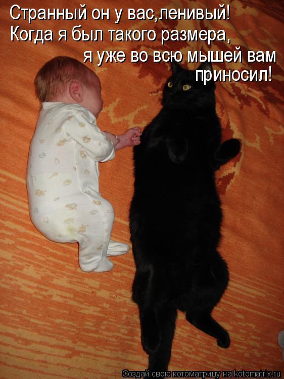 Котоматрица: Странный он у вас,ленивый! Когда я был такого размера, я уже во всю мышей вам  приносил!