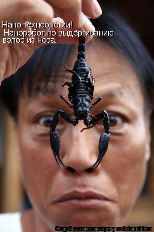 Котоматрица: Нано техноологии!    Наноробот по выдёргиванию  волос из носа.
