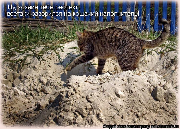 Котоматрица: Ну, хозяин тебе респект! всётаки разорился на кошачий наполнитель!