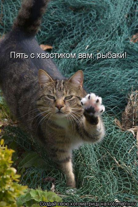 Котоматрица: Пять с хвостиком вам, рыбаки!