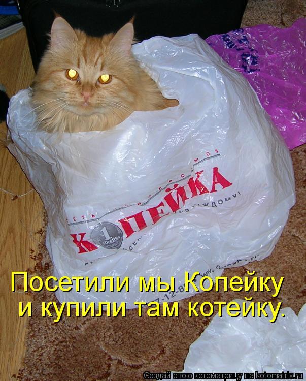 Котоматрица: Посетили мы Копейку  и купили там котейку.