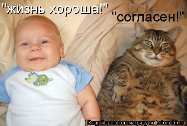 """Котоматрица: """"жизнь хороша!"""" """"согласен!"""""""