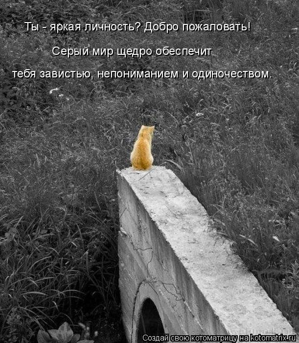 Котоматрица: тебя завистью, непониманием и одиночеством. Ты - яркая личность? Добро пожаловать!  Серый мир щедро обеспечит