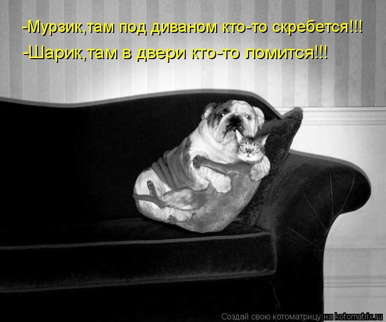 Котоматрица: -Мурзик,там под диваном кто-то скребется!!! -Шарик,там в двери кто-то ломится!!!