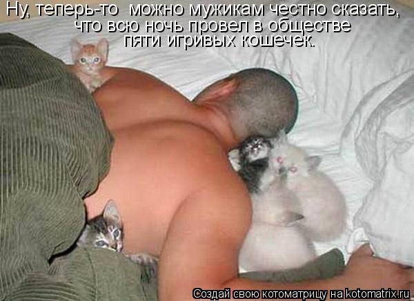 Котоматрица: Ну, теперь-то  можно мужикам честно сказать, что всю ночь провел в обществе пяти игривых кошечек.