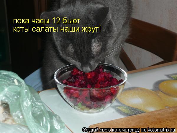 http://kotomatrix.ru/images/lolz/2010/06/06/595406.jpg