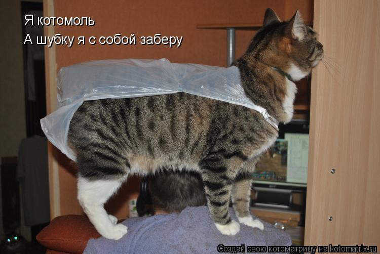 Котоматрица: Я котомоль  А шубку я с собой заберу