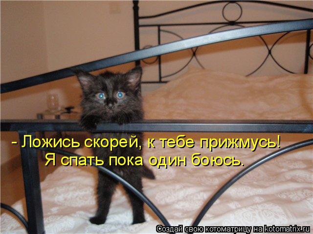 Котоматрица: - Ложись скорей, к тебе прижмусь! Я спать пока один боюсь.