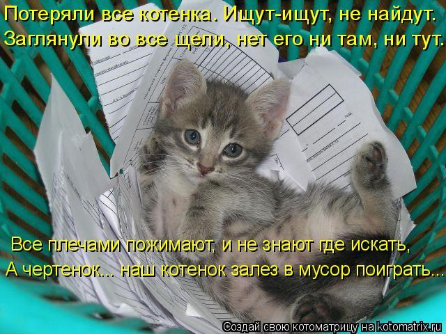 Котоматрица: Потеряли все котенка. Ищут-ищут, не найдут. Заглянули во все щели, нет его ни там, ни тут. А чертенок... наш котенок залез в мусор поиграть...  Вс