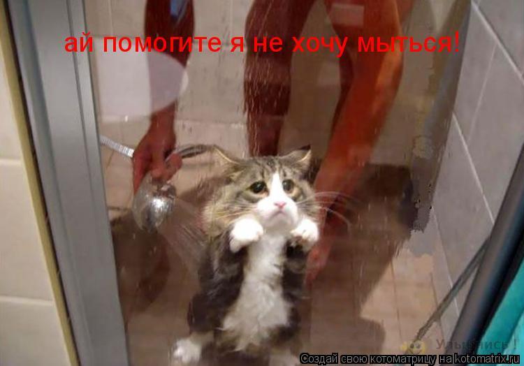 Котоматрица: ай помогите я не хочу мыться!