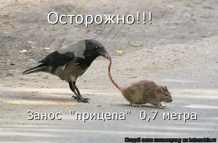 "Котоматрица: Осторожно!!! Занос  ""прицепа""  0,7 метра"