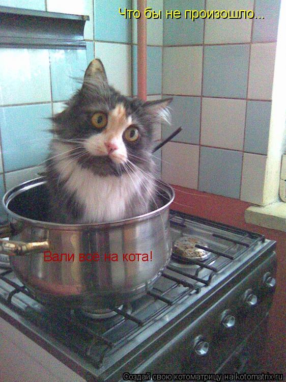 Котоматрица: Что бы не произошло... Вали всё на кота!