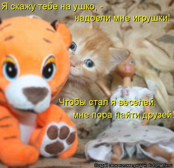 Котоматрица: Я скажу тебе на ушко, -  Чтобы стал я веселей, надоели мне игрушки! мне пора найти друзей!