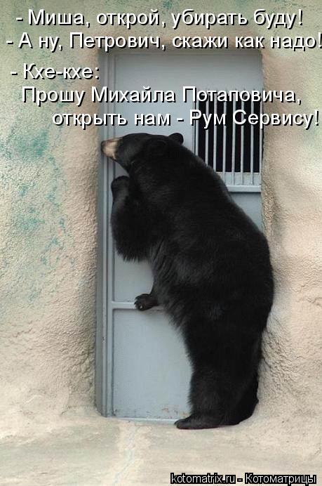 Котоматрица: - Миша, открой, убирать буду!  - А ну, Петрович, скажи как надо! - Кхе-кхе: Прошу Михайла Потаповича,  открыть нам - Рум Сервису!