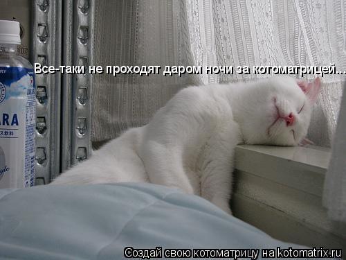 Котоматрица: Все-таки не проходят даром ночи за котоматрицей...