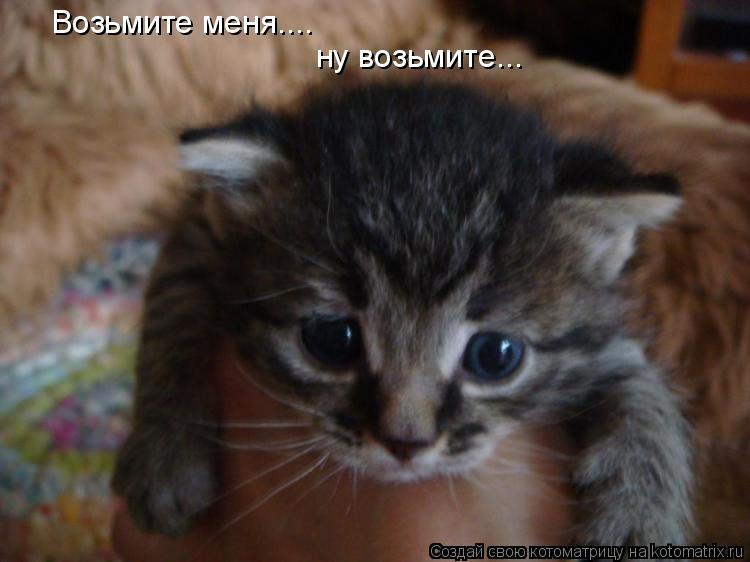 http://kotomatrix.ru/images/lolz/2010/06/08/597642.jpg