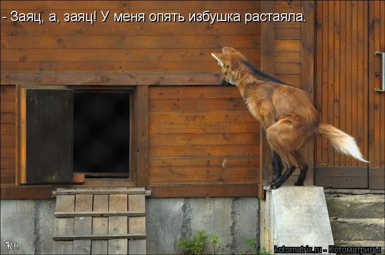 http://kotomatrix.ru/images/lolz/2010/06/08/597849.jpg