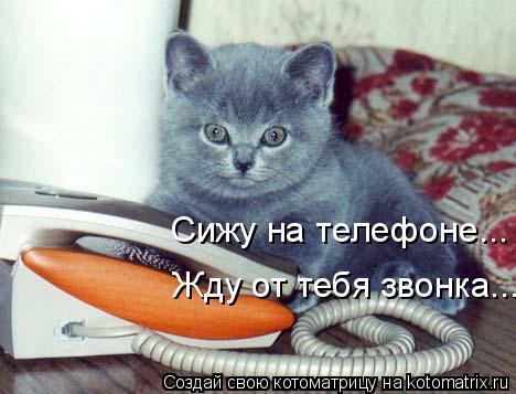 http://kotomatrix.ru/images/lolz/2010/06/08/597946.jpg
