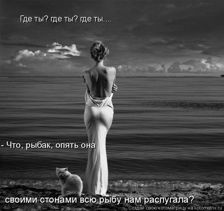 Котоматрица: Где ты? где ты? где ты....  - Что, рыбак, опять она  своими стонами всю рыбу нам распугала?