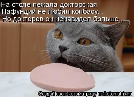 Котоматрица: На столе лежала докторская Пафундий не любил колбасу... Но докторов он ненавидел больше...
