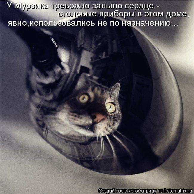 Котоматрица: У Мурзика тревожно заныло сердце - столовые приборы в этом доме, явно,использовались не по назначению...