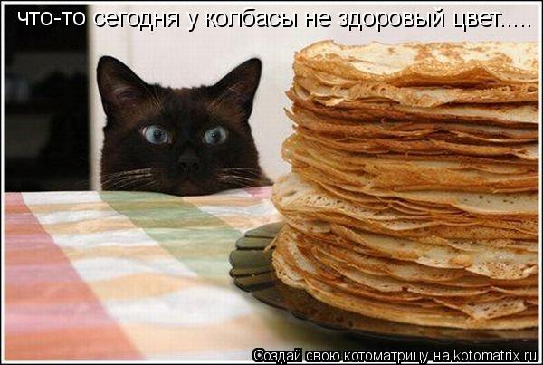 Котоматрица: что-то сегодня у колбасы не здоровый цвет.....