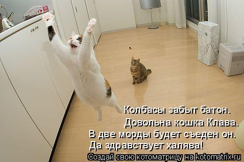 Котоматрица: В две морды будет съеден он. Да здравствует халява! Довольна кошка Клава. Колбасы забыт батон.