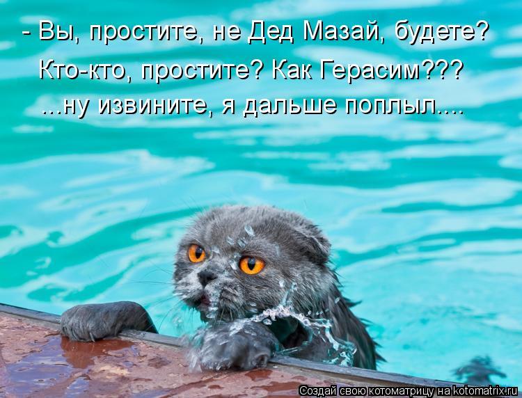 Котоматрица: - Вы, простите, не Дед Мазай, будете? Кто-кто, простите? Как Герасим??? ...ну извините, я дальше поплыл....