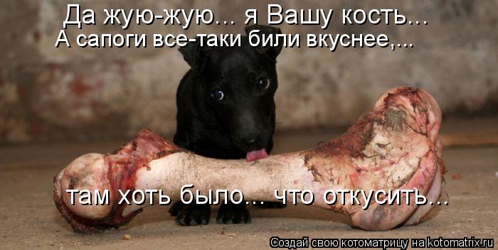 Котоматрица: Да жую-жую... я Вашу кость...  А сапоги все-таки били вкуснее,... там хоть было... что откусить...